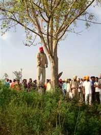 पेड़ से लटकता हुआ विकलांग व्यक्ति का मिला शव